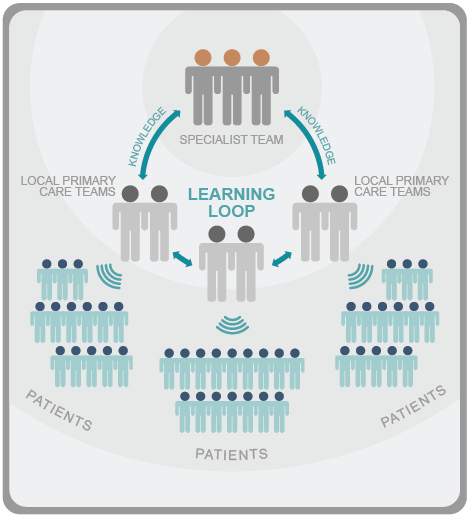 There is a learning loop where knowledge flows from specialists